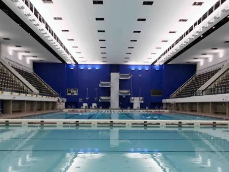 Pan-Am Pool - Acoustic Ceiling