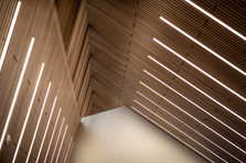 Linea Plank   Edmonton Public Library