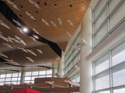 Plasterform - Winnipeg Airport