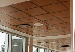 Gordon | Bethesda Hospital