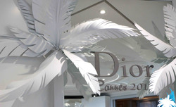 DIOR CANNES 2017