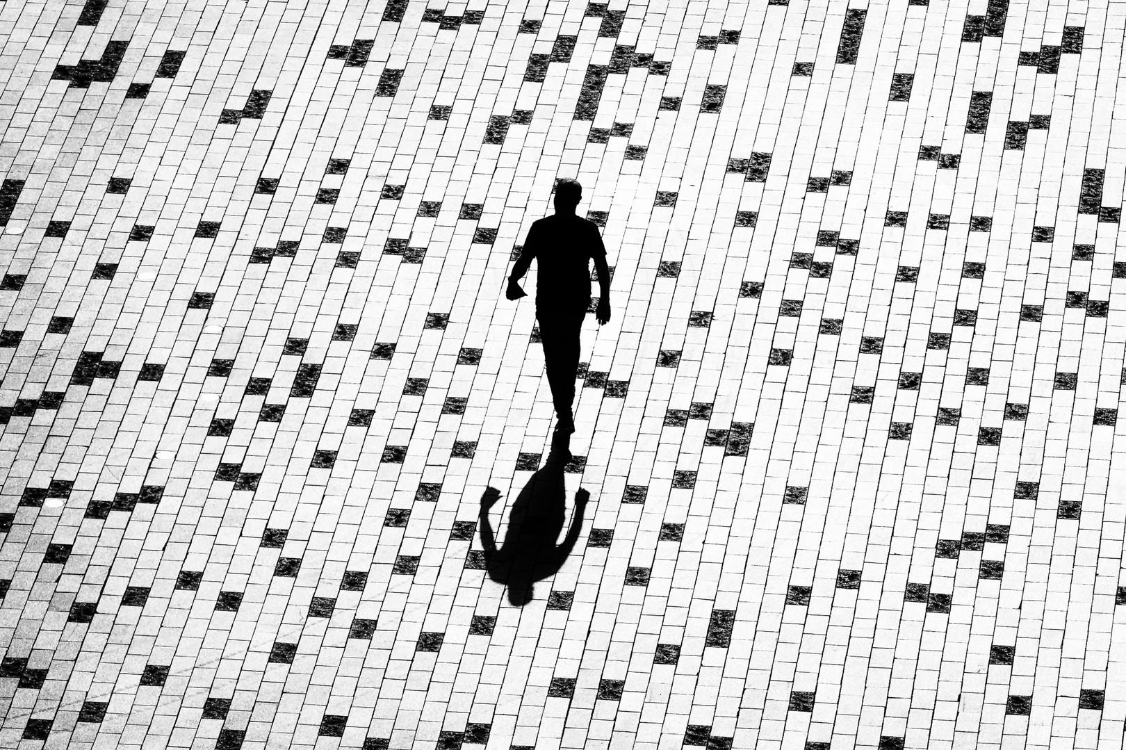 Faire partie d'un puzzle / Being part of a puzzle