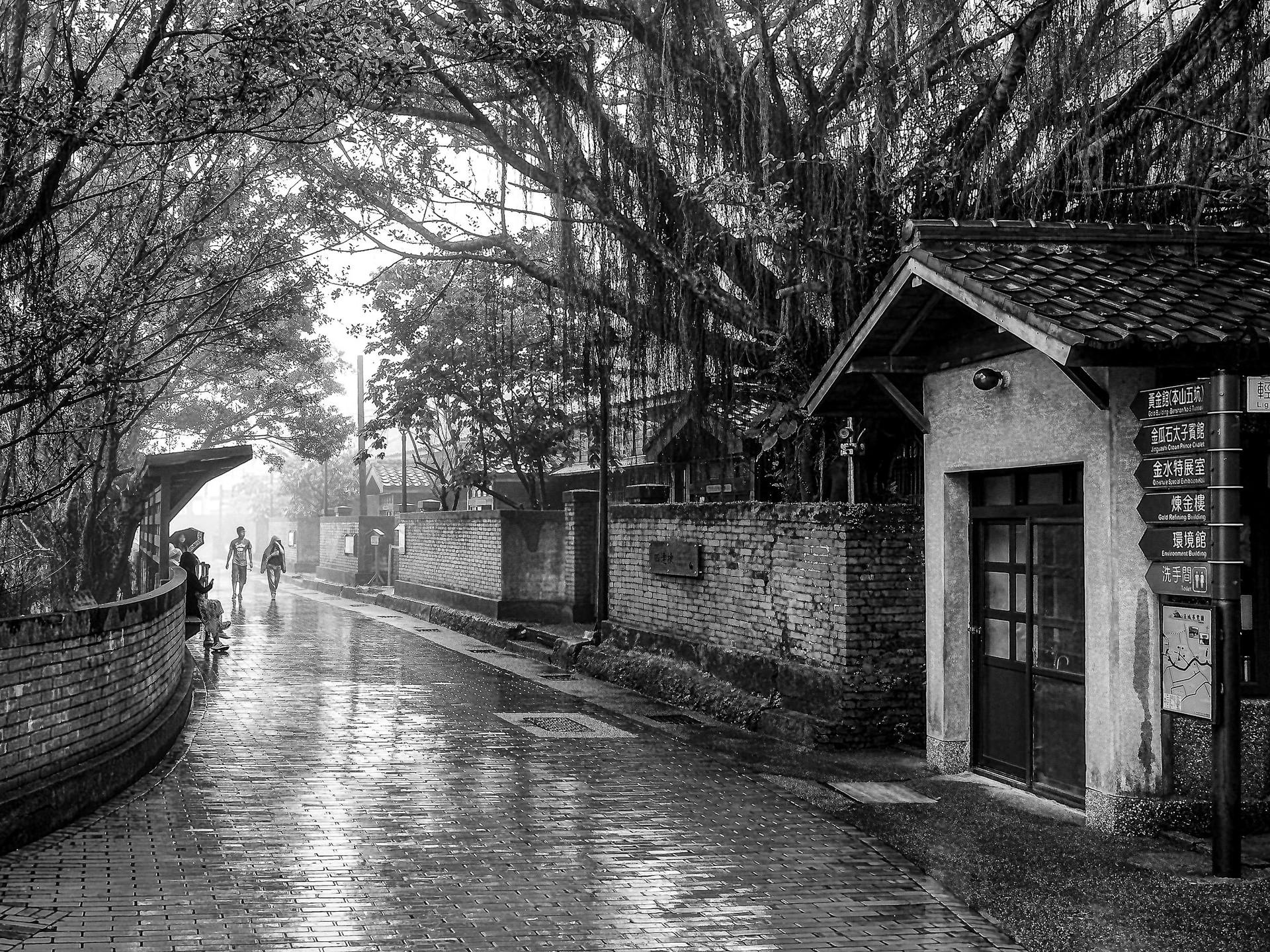 Le poids de la pluie / The weight of rain