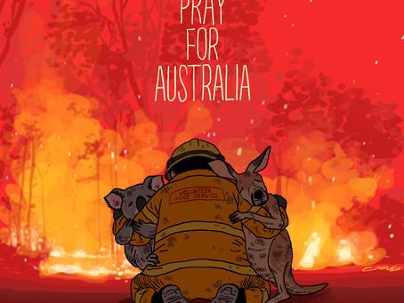 澳洲森林大火緊急籌款 - 拯救野生動物