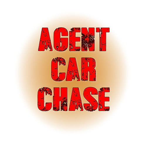 Agent Car Chase