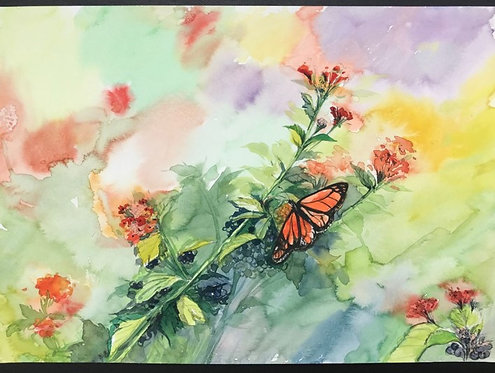 Connie Su - Monarch & Colors