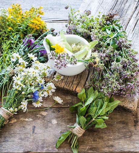 Herbs medicine flowers.jpg