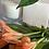 Thumbnail: Palo Santo Candle