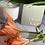 Thumbnail: Desert Kush Candle