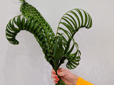 Fondling My Fronds Of Foliage