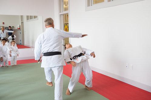 Aikido Adults 2 Days/wk