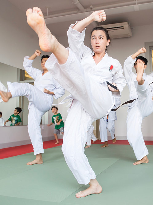 Adult Beginner In-Person Karate