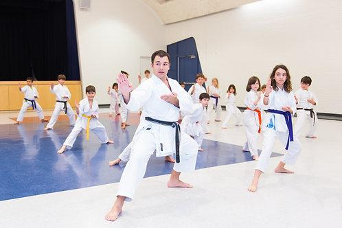 Kids Hybrid Karate-Dojo/Zoom Intermediate/Advanced
