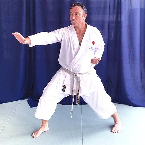 Adult Hybrid Karate -Dojo/Zoom/Park