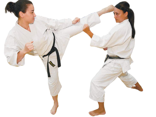 ZOOM Adult Karate Beginner