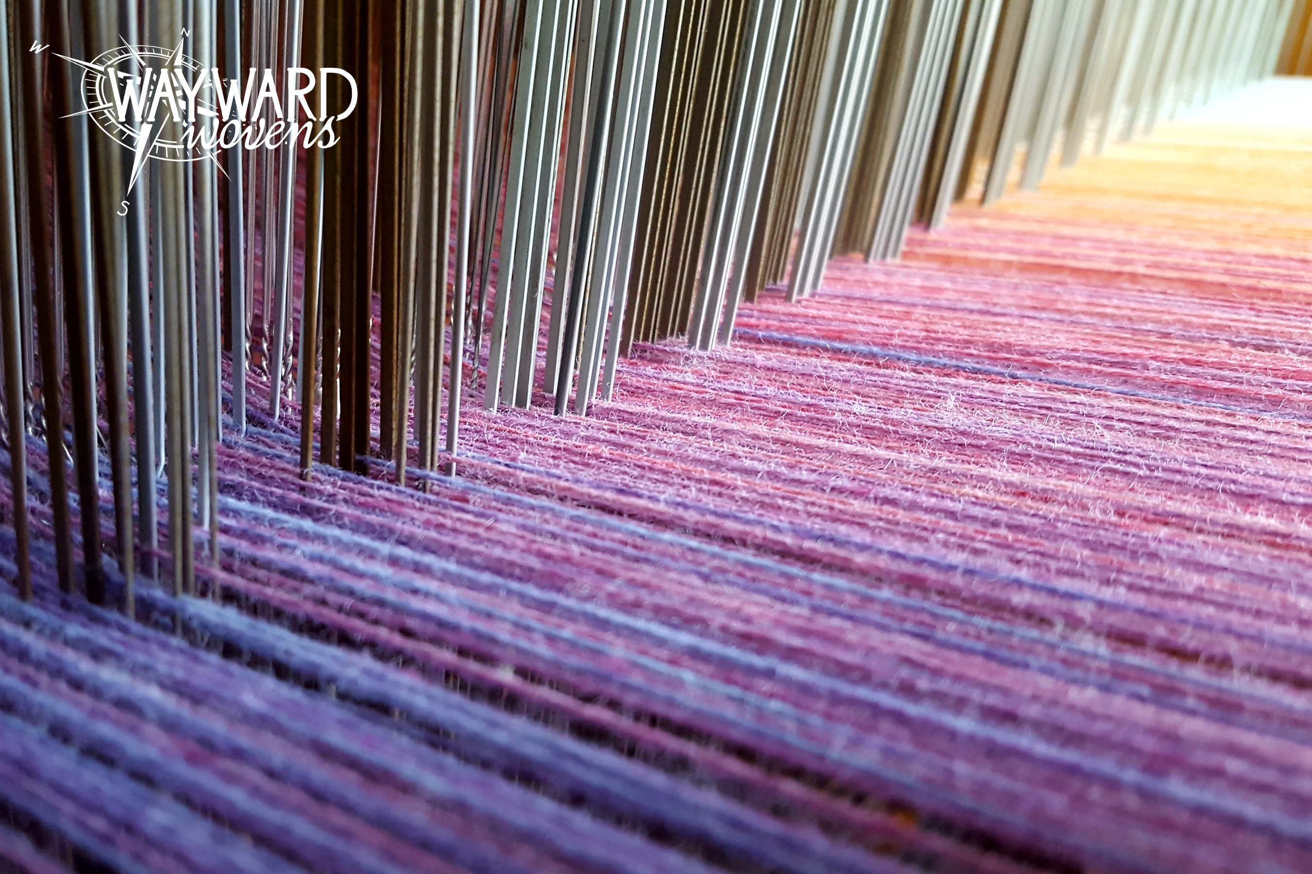 Warp through heddles