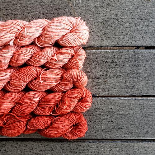 Terracotta Fade - set of 5 mini sock weight superwash wool skeins