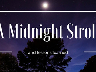 Lessons from a Midnight Walk