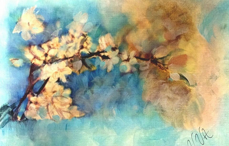 cherry++blossom