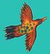 Bird in a sky box (1).png
