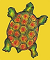 Turtle in a yellow box (1).png