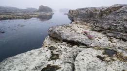 Antrim coast.5.jpg