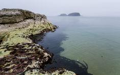 Antrim coast.4.jpg