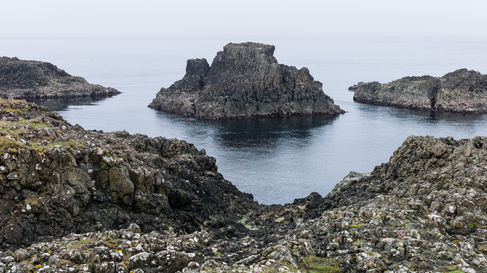 Antrim coast.3.jpg