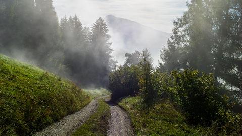 Morning_fog_in_the_Südtirol.jpg