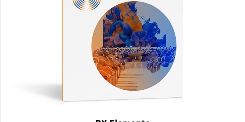 Understanding RX Elements