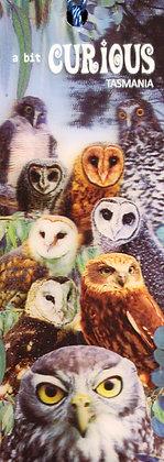 A Bit Curious Owl Book Mark