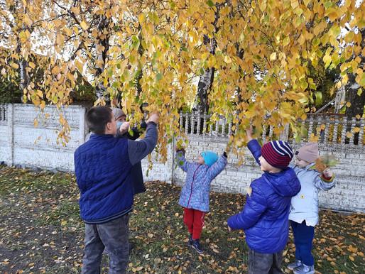 Бал осенних листьев