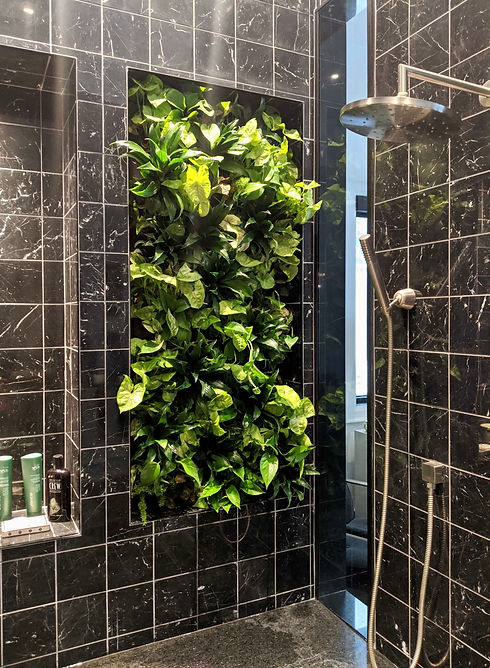 Private Residence Living Wall Greenterio