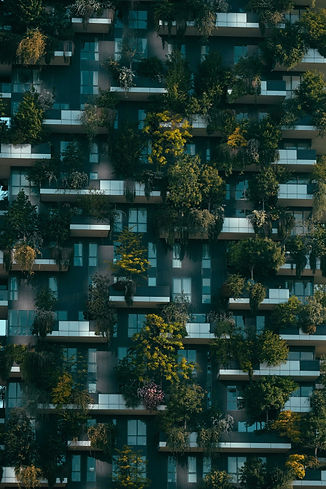 vertical forest.jpg