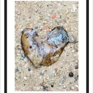 Coeur à nu