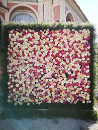 roses_wall_Ephrussi_2.jpg