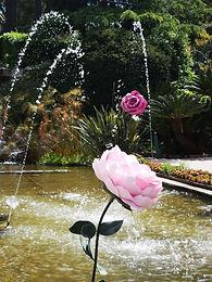Rose Eau Dessine M_Ephrussi.jpg