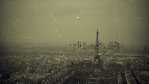 Eiffel from afar vintage_MAH
