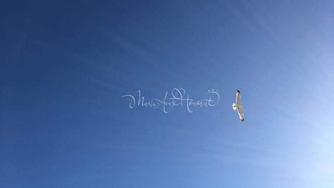 Flying forward to Light_MAH.jpg