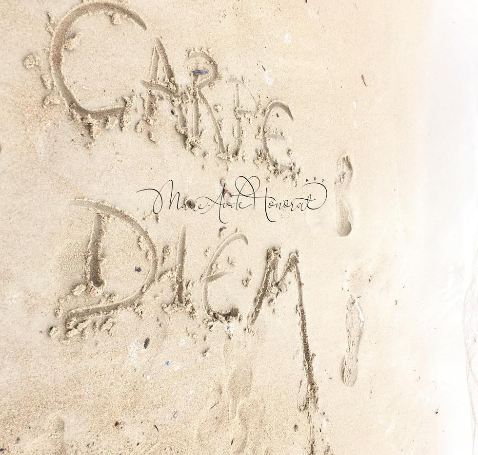 Carpe Diem_MAH.jpg