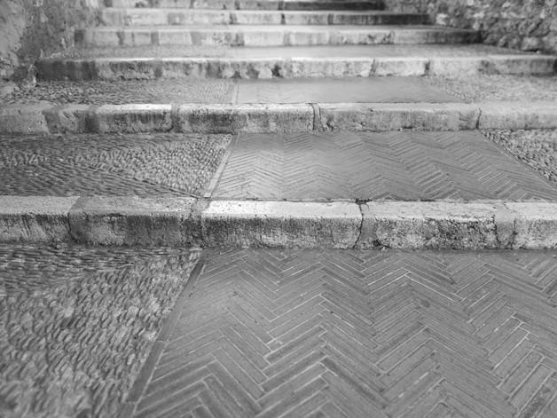 Variété des étapes.jpg