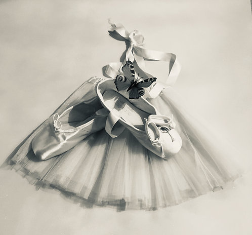 """Toile """"Pointes & Papillons"""" BW"""