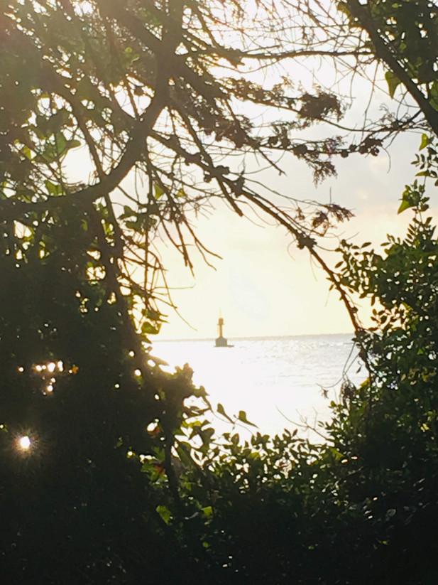 Aurore du phare.jpg