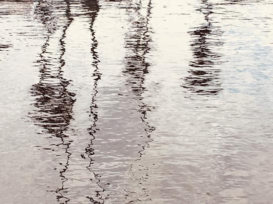 Marches aquatiques