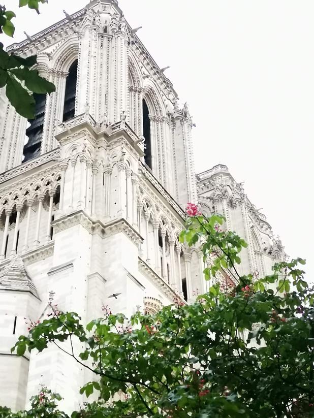 Notre Dame @ Paris