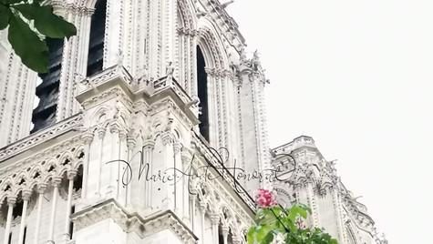 beloved Notre Dame_MAH