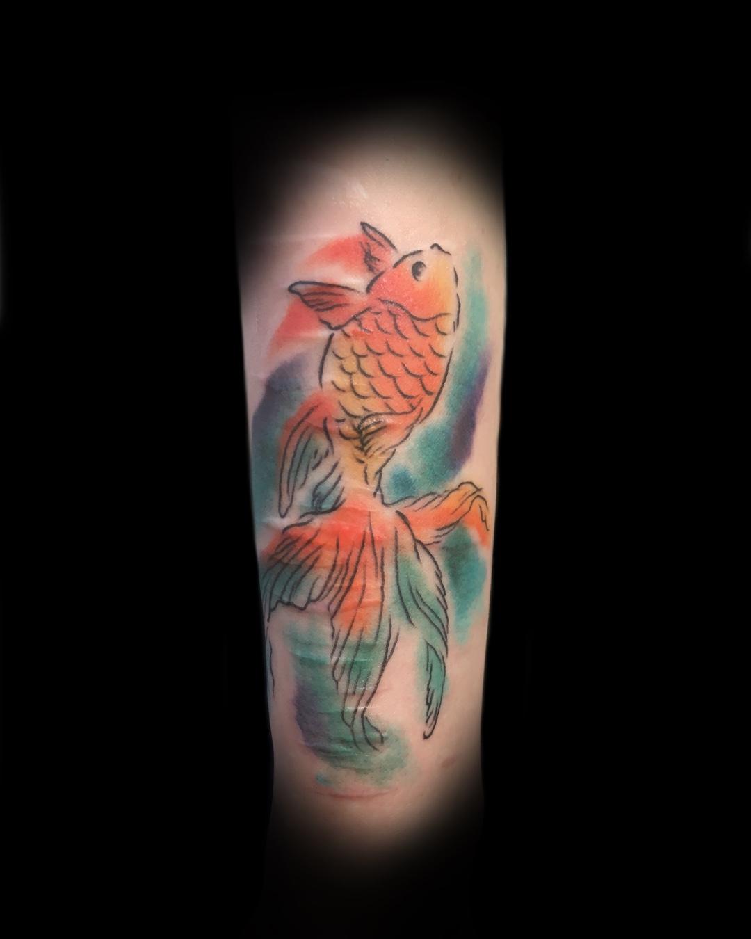 金魚 水彩 | COLOR