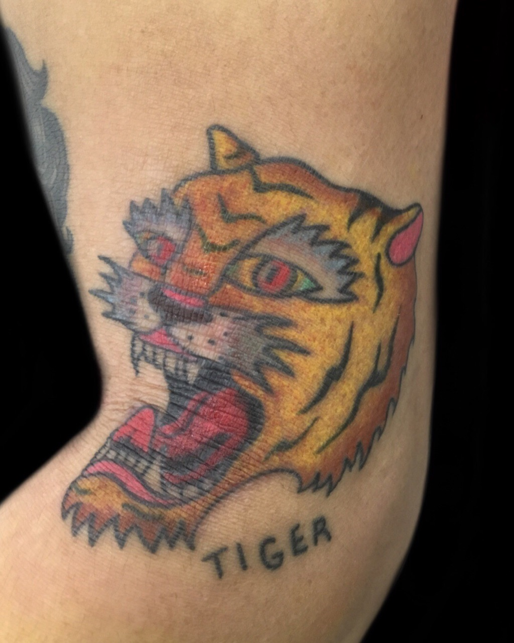 虎 | TRADITIONAL