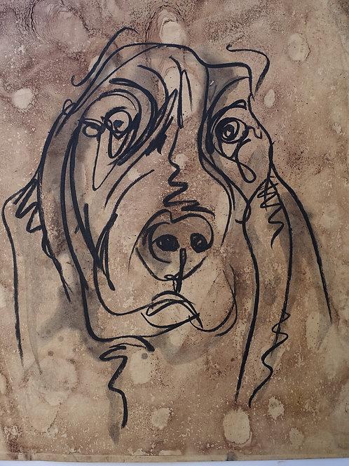 chien - REF : CHIE-19-17