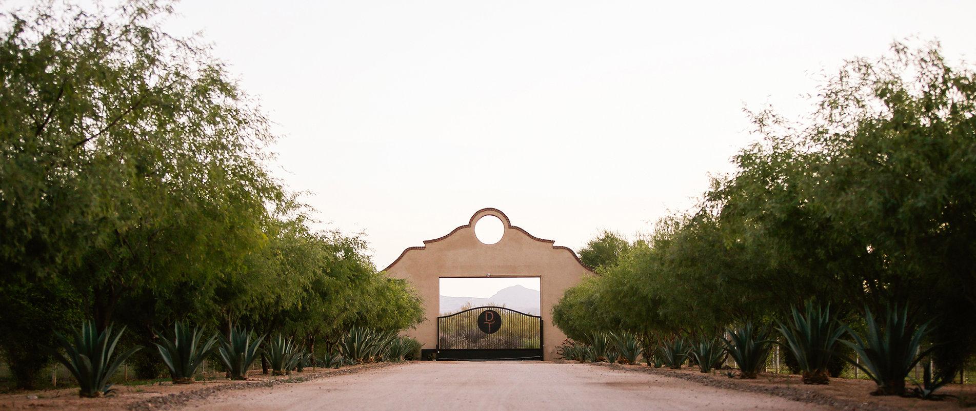 Arizona-Front Gates-DT-Horses-HX28191-Ed